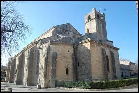Comment s'appelle cette cathédrale catholique romaine située dans la ville ?