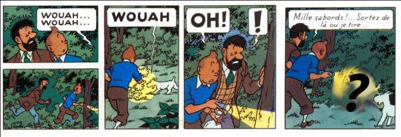 Restons dans le parc : Que vont découvrir Milou, Tintin et le Capitaine, en cette nuit pleine de mystères ?