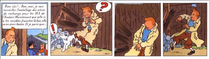 Tintin est en pleine tentative d'écouter ce qui ne le regarde pas... mais que lui arrive-t-il, brusquement ?
