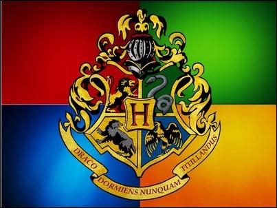 Quelle maison de ''Harry Potter'' te représente le plus ?