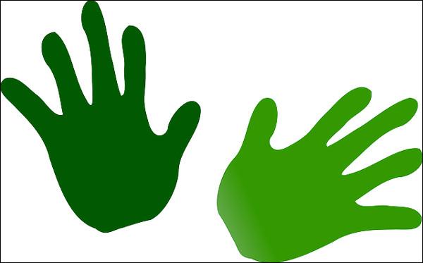 """Que veut dire l'expression """"Avoir la main verte"""" ?"""