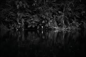 """Qui a écrit """"Au cœur des ténèbres"""" ?"""