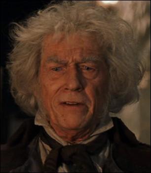 Chez quel fabricant de baguette magique Harry a-t-il été pour trouver la sienne ?