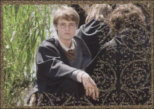 Dans sa jeunesse, quel surnom portait James Potter, le père d'Harry ?