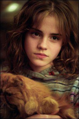 L'animal de compagnie d'Hermione est un chat orange, mais comment se nomme-t-il ?