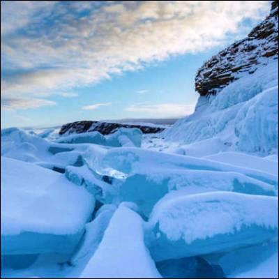 Quel animal préhistorique aujourd'hui disparu a été découvert pour la première fois congelé en Sibérie en 1799 ?