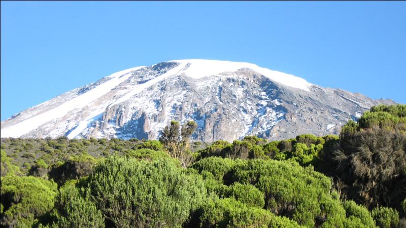 Quel est le plus haut sommet d'Afrique ?