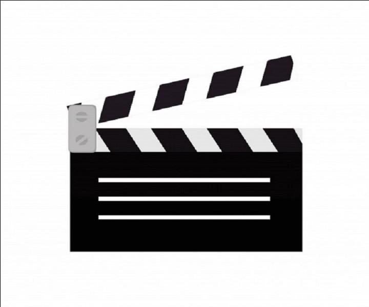 Qui sont les deux grandes stars américaines qui jouent les rôles principaux dans le film ''L'Arnaque'' ?