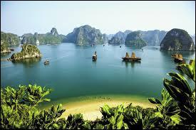 Quelle est la monnaie du Viêt Nam ?