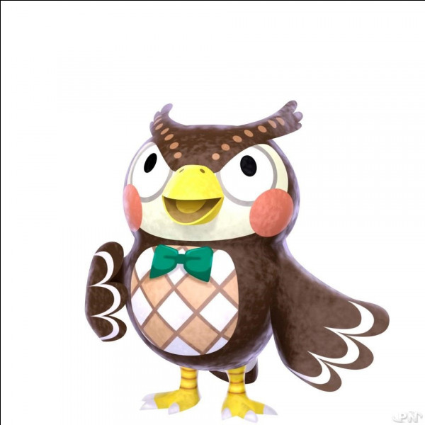 "Où travaille Thibou dans ""Animal Crossing"" ?"