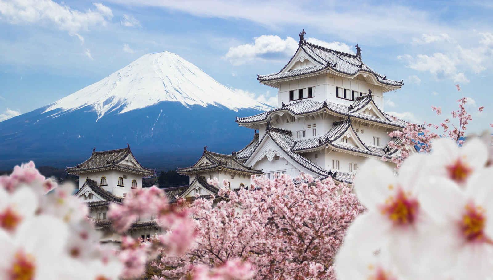 Le Japon tient le ponpon !