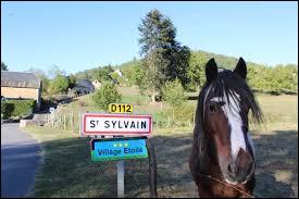 Et nous terminons notre balade en compagnie de ce cheval, à l'entrée de Saint-Sylvain. Village de l'ex région Limousin, il se situe dans le département numéro ...