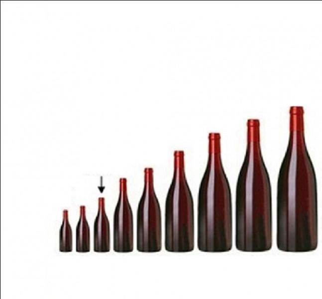 Quel nom donne-t-on à la petite bouteille d'une contenance de 35 cl très répandue en Anjou ?