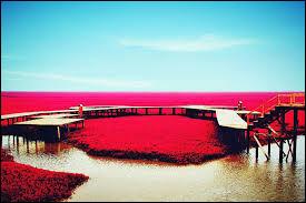 Où se trouve cette mer rouge ?