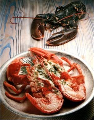 Ho, comme homard : quel est le nom de ces petits homards ?