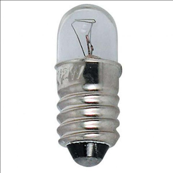 Pour allumer une mini-ampoule, est-ce que le sens des bornes de la pile est important ?