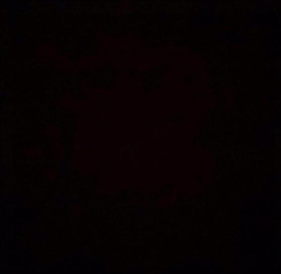 Quand un objet ne laisse passer aucune lumière, on dit qu'il est...