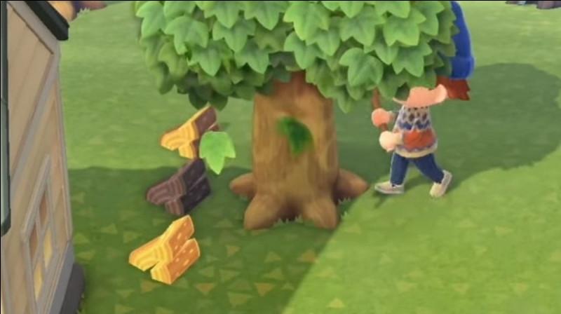 Que se passe-t-il si tu te fais piquer par une guêpe en secouant ou coupant un arbre ?
