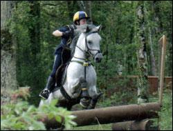 Quand on fait du cross, on met ---- au cheval.