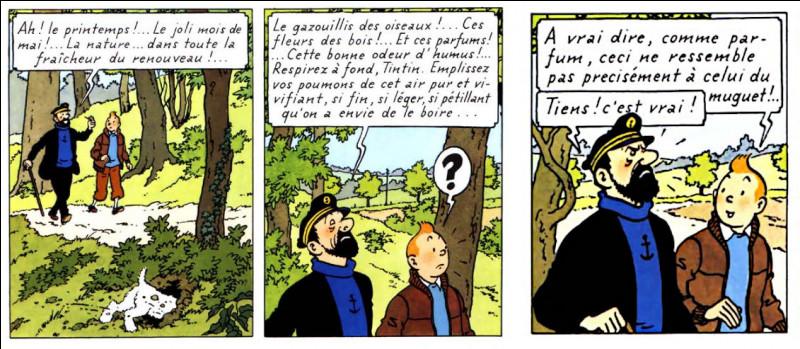 """Récréation > Au tout début des """"Bijoux..."""", Tintin fait cette remarque pestil... heu ! pertinente au capitaine. Pourquoi ?"""