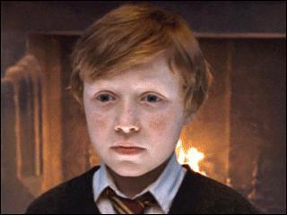 Quel personnage inventé par le réalisateur n'apparaît à aucun moment dans les livres écrits par J. K. Rowling ?