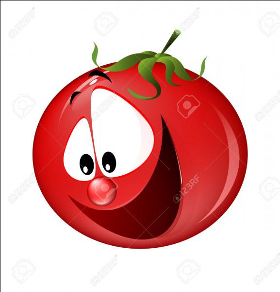 Y a-t-il de la tomate dans la bouillabaisse et sa sauce rouille ?