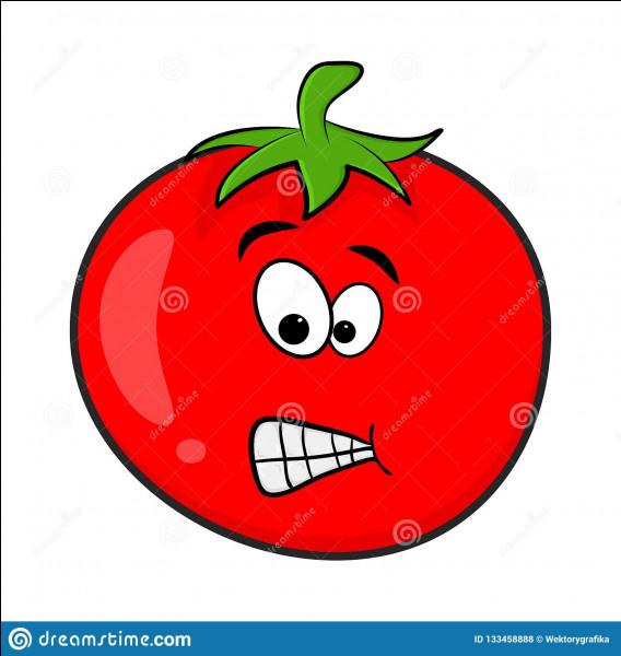 Met-on de la tomate dans le lapin chasseur ?