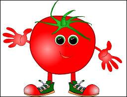 Est-il indispensable d'avoir de la tomate pour la réalisation de la pissaladière ?