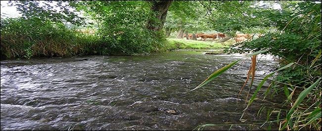 La Sée est une rivière traversant [...] entre autres lieux.