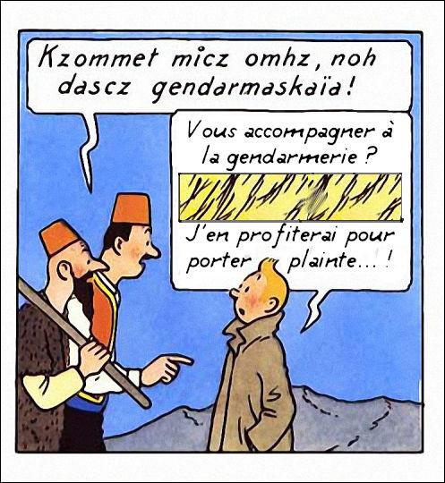 Même dans une langue aussi complexe que le syldave vernaculaire, Tintin ne se débrouille pas si mal... La preuve !