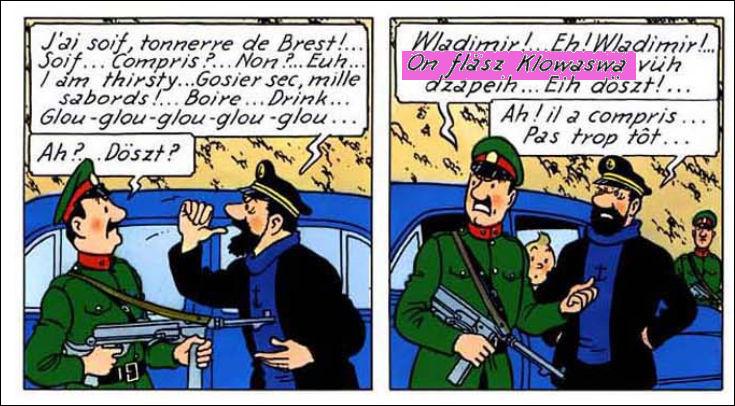 Le capitaine, quant à lui, ne maîtrise absolument pas le syldave : que dit le garde ?