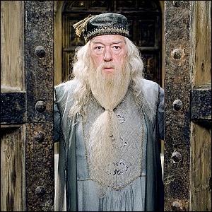 Comment s'appelle le livre sur la vie de Dumbldore ?