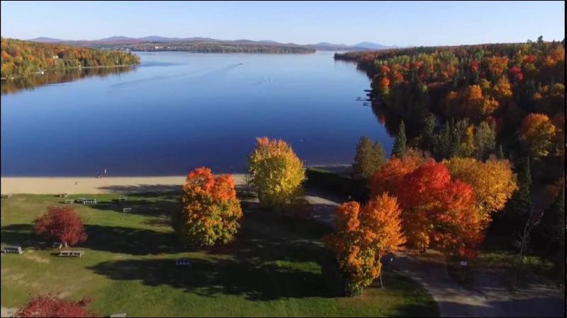 6 juillet 2013. La petite ville de Lac-Mégantic, au Québec, fut la proie d'un immense incendie qui tua 47 personnes et causa plus d'1,5 milliard de dollars de dégâts. Quel événement est à l'origine de cette tragédie ?