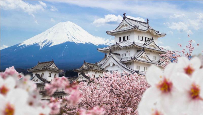 Géographie : où se trouve le Japon par rapport à la France ?