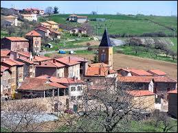 Commune de l'arrondissement de Villefranche-sur-Saône, Saint-Julien-sur-Bibost se situe dans le département ...