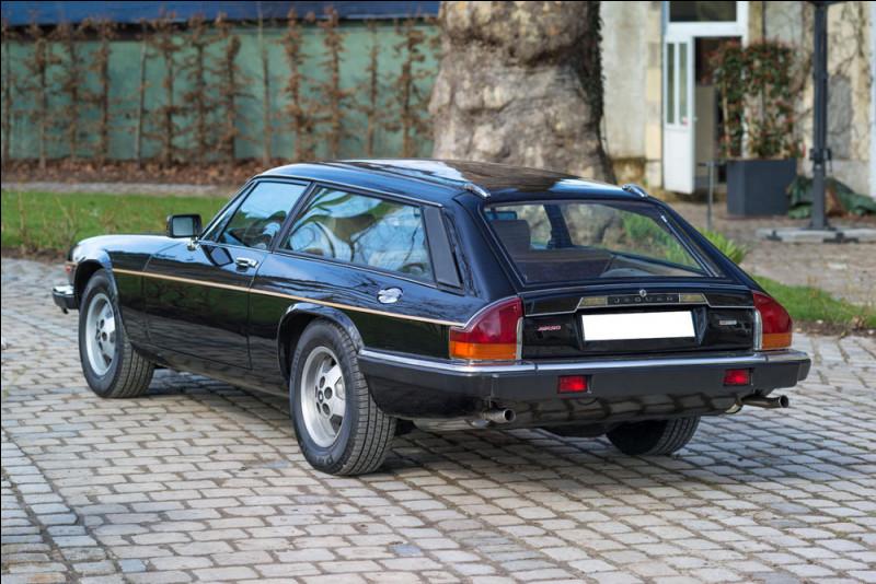 """Mais si vous disposez d'un peu moins de 100 000 €, mieux vaut aller chasser ce/cette """".. ?.."""" avec les 295 cv de chez Jaguar !"""