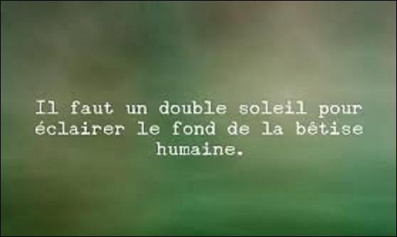 Citation : À quel écrivain et philosophe doit-on cette phrase : ''Il faut un double soleil pour éclairer le fond de la bêtise humaine'' ?