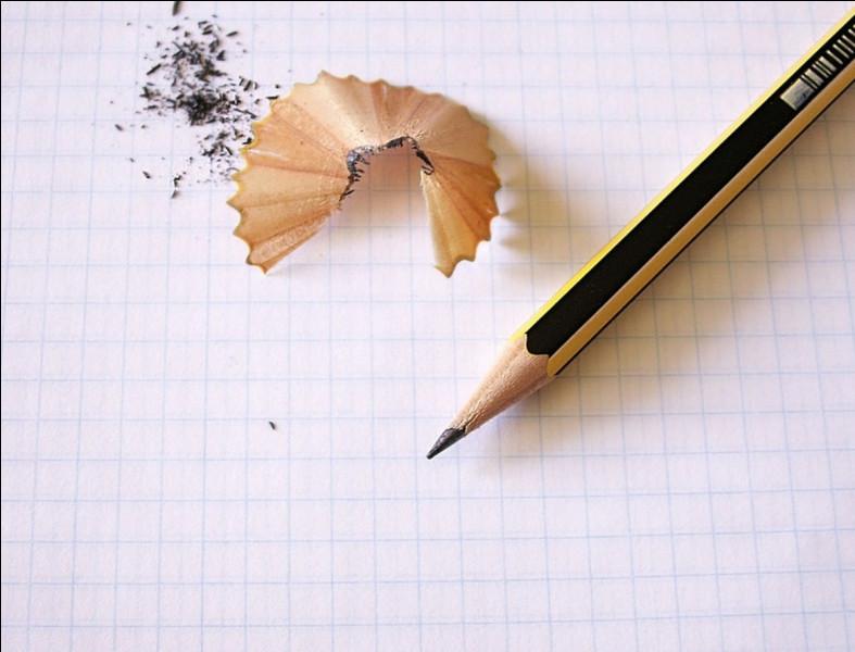 Comment appelez-vous cet objet permettant d'écrire ?