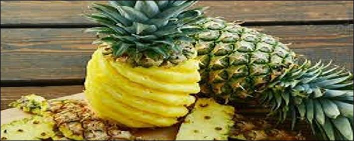 Le fruit nommé ananas pousse-t-il sur un arbre ?