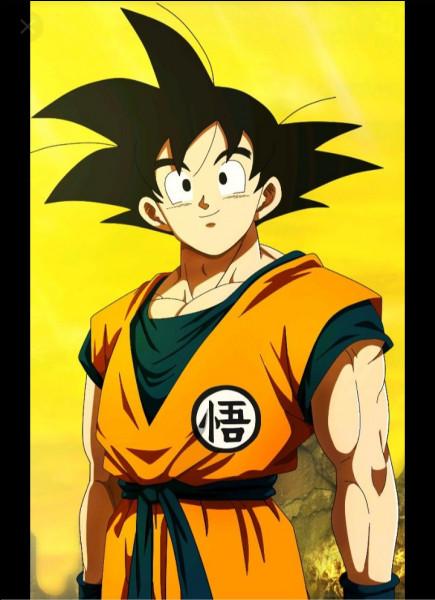 Combien Goku a-t-il de formes au total ? (OAV compris)