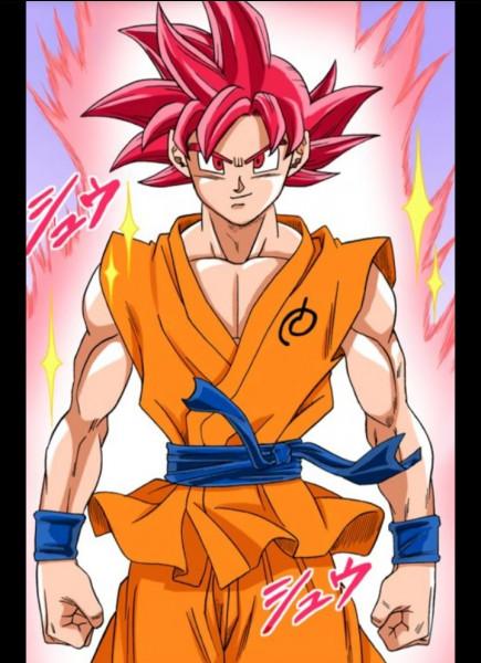 Combien de personnes ont-elles atteint le Super Saiyens God dans Super Dragon Ball Heroes ?
