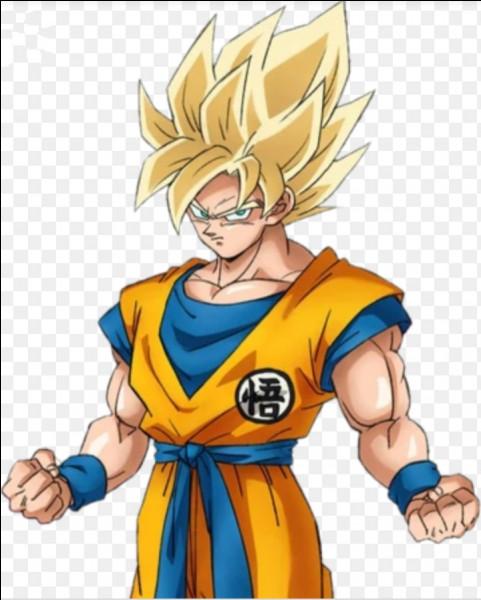 Combien de personnes peuvent-elles se transformer en Super Saiyen dans tout l'univers du manga (OAV compris) ?