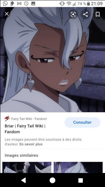Connais-tu Fairy Tail