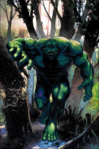 Hulk (et non Bruce Banner) a été interprété par :
