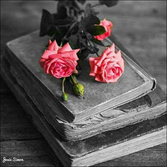 """On commence doucement : qui a écrit """"Les Fleurs du Mal"""" ?"""