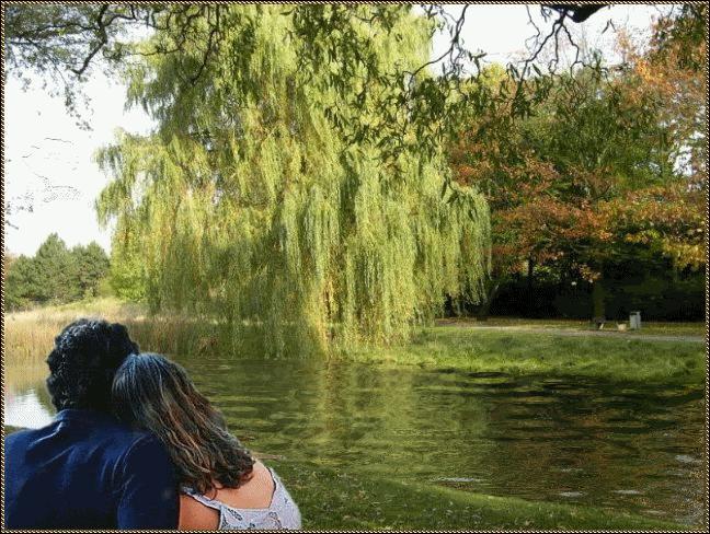 Il y a longtemps que je t'aime, jamais je ne t'oublierai. Sous les feuilles... .