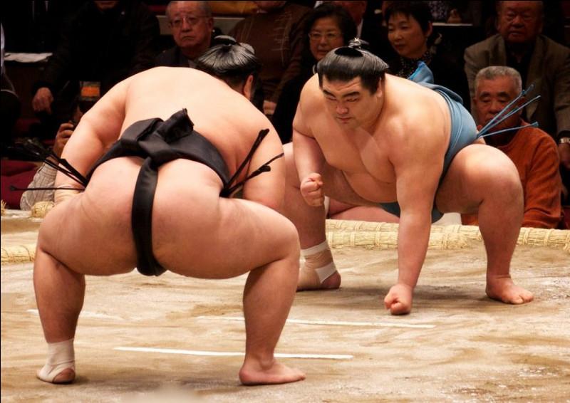 Quel est le poids moyen des sumos ?