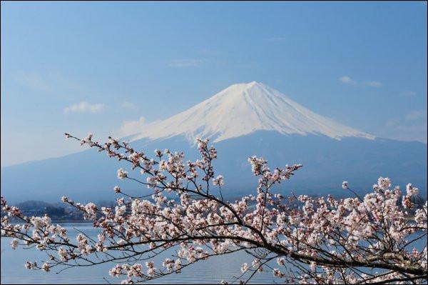 Le Japon possède sur son territoire 260 volcans dont 80 sont actifs.