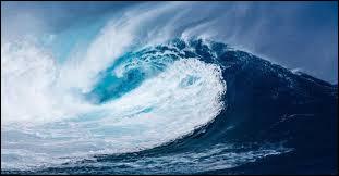 Le Japon subit des milliers de séismes par an, dont certains, en mer, entraînent des tsunamis. Quel est sa traduction en français ?