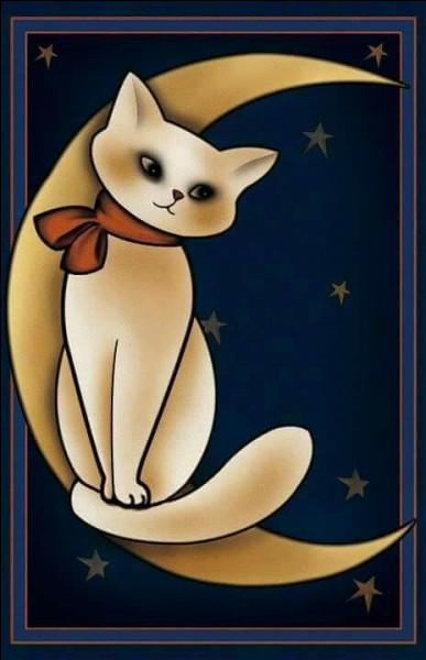 Lequel de ces écrivains hébergeait une centaine de chats dans sa maison ?